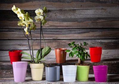 Produktfotografie Blumentoepfe aus Keramik - Set.