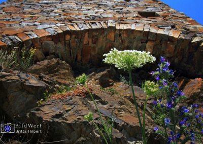 Naturstein am Weinberg: Moselgrauwacke
